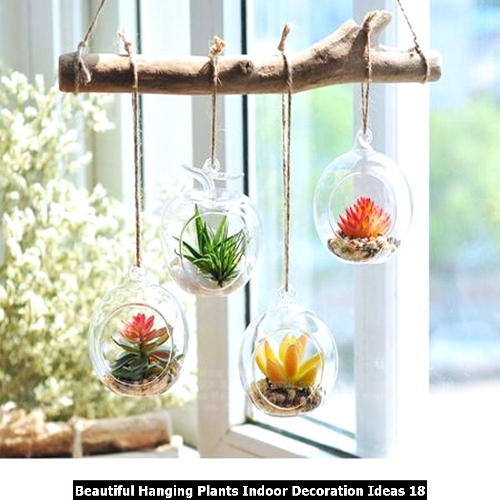 Beautiful Hanging Plants Indoor Decoration Ideas 18