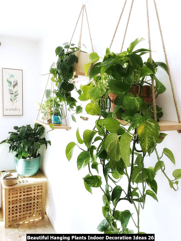 Beautiful Hanging Plants Indoor Decoration Ideas 26