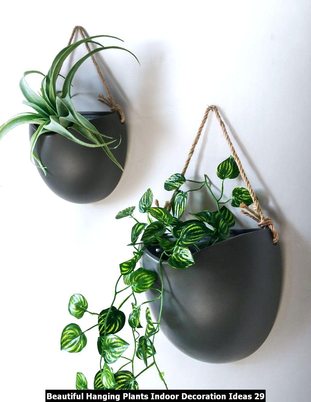 Beautiful Hanging Plants Indoor Decoration Ideas 29