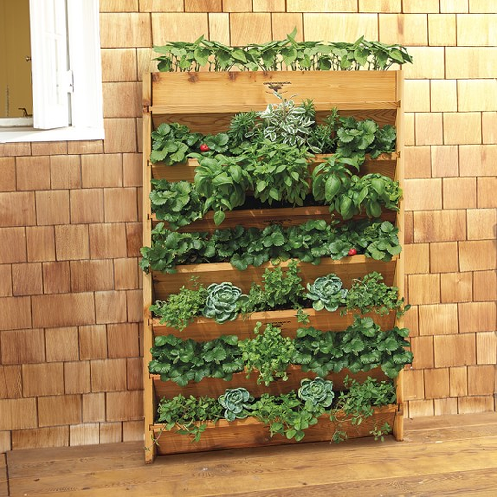 Popular Vertical Garden Wall For Outdoors Decor 12