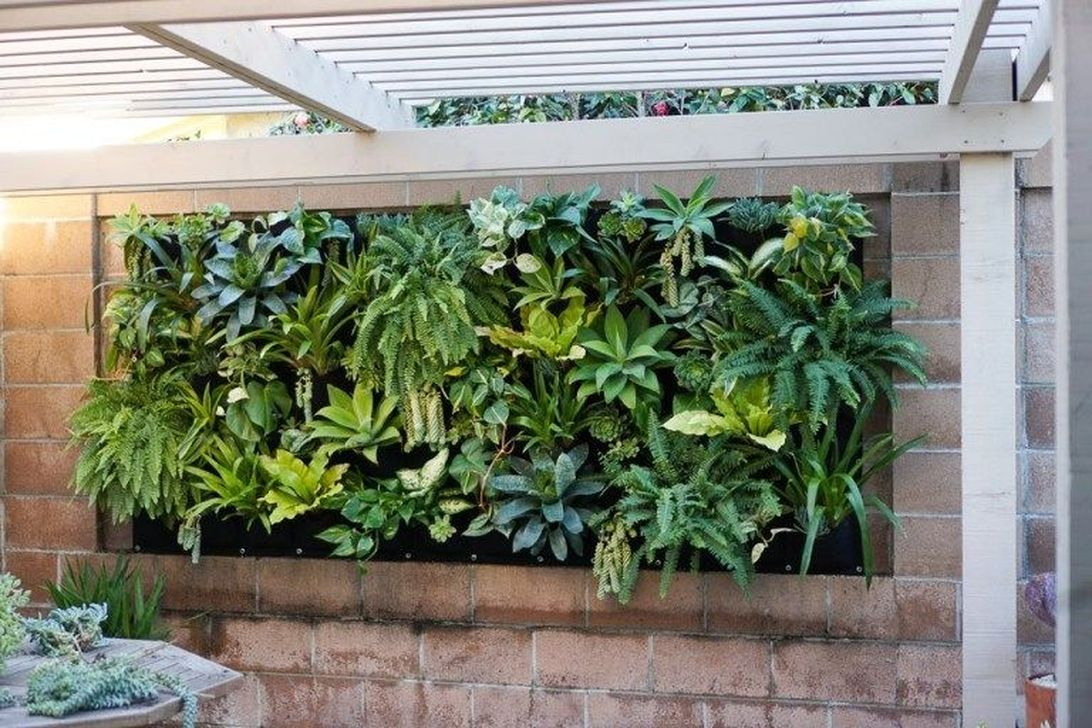 Popular Vertical Garden Wall For Outdoors Decor 17