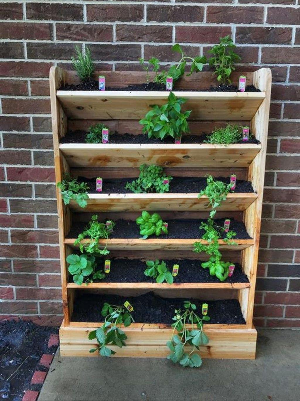 Popular Vertical Garden Wall For Outdoors Decor 21