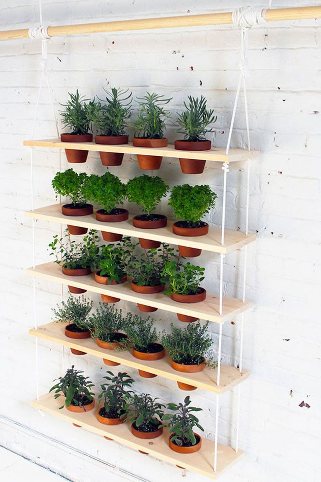 Popular Vertical Garden Wall For Outdoors Decor 27