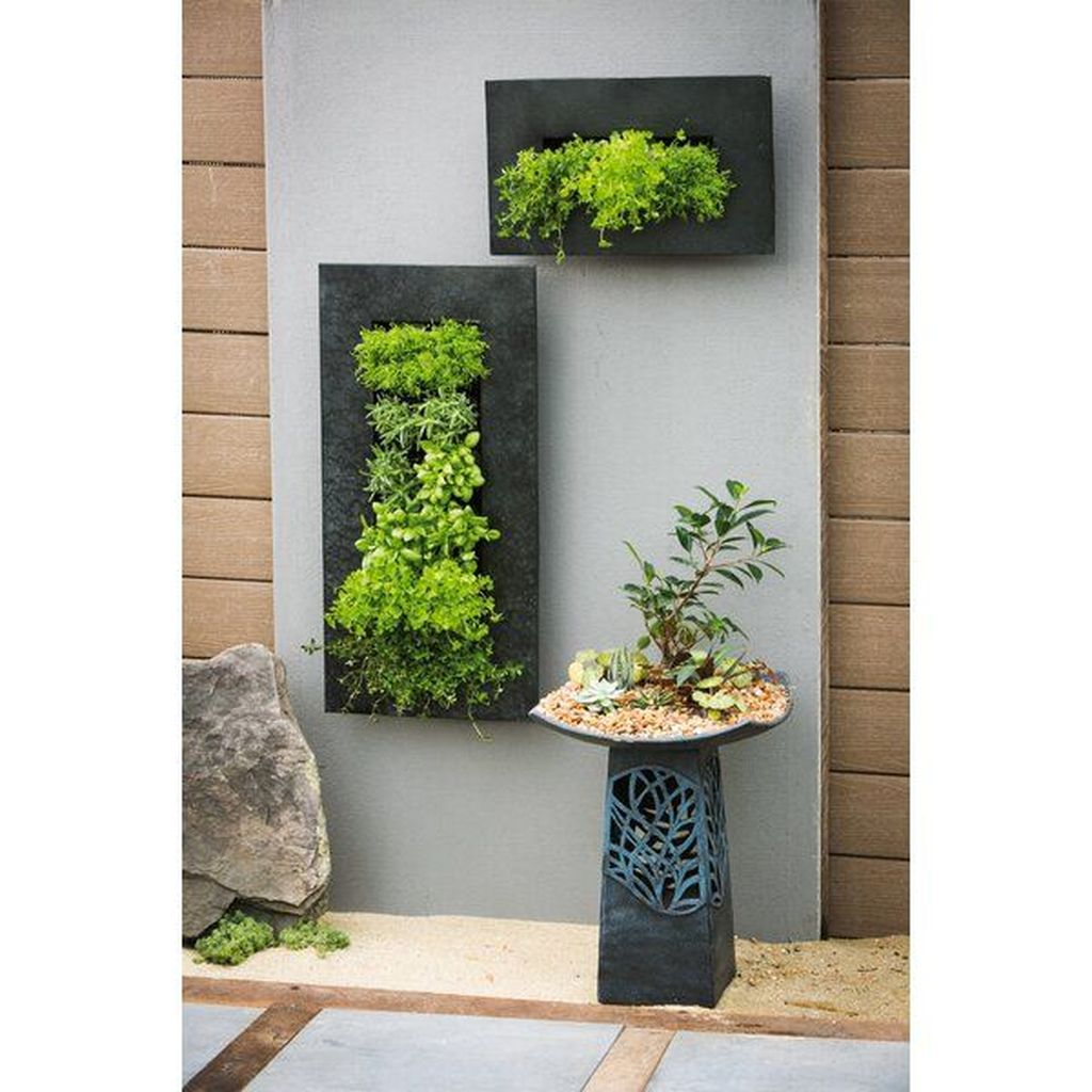 Popular Vertical Garden Wall For Outdoors Decor 30