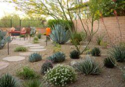 Desert Landscape Ideas For Backyards