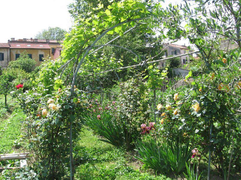 Memoria Narrante, orto-giardino-di-cristina-mochi, foto web