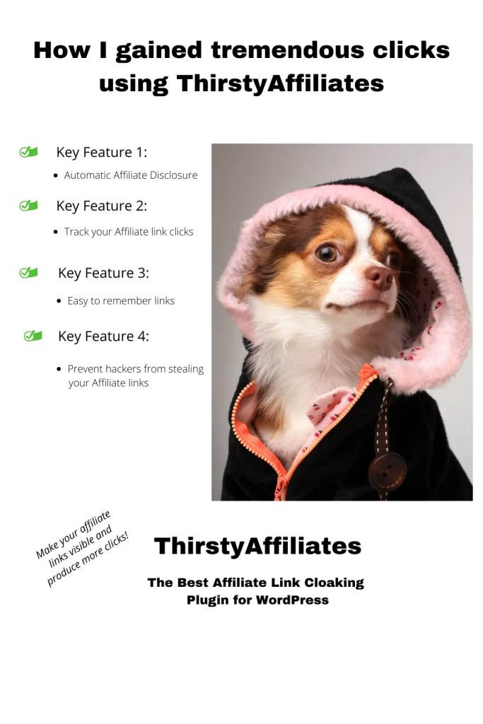 How I gained tremendous clicks with ThirstyAffiliates 1 A blog for the love of Pinterest