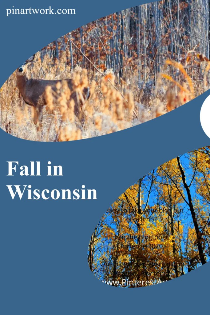 Fall Colors in Wisconsin 2 A blog for the love of Pinterest