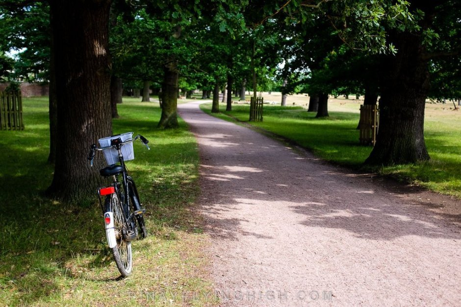 Hampton Court Bike Ride Tour by Coddiwomple Tours - PINAYFLYINGHIGH.COM-111