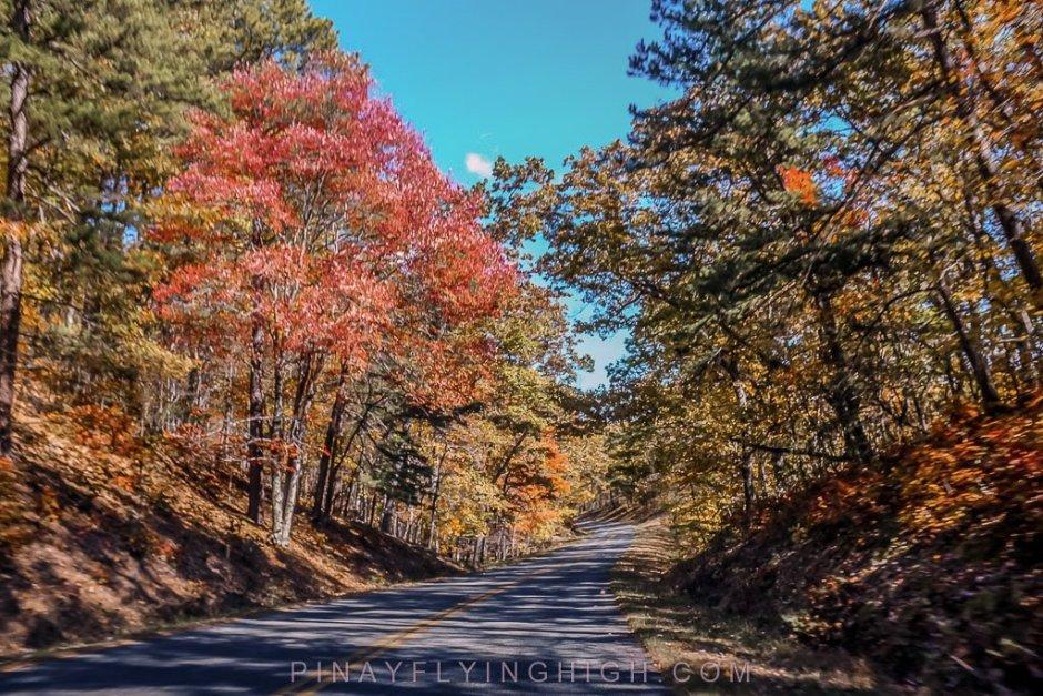 Blueridge Parkway - PINAYFLYINGHIGH.COM