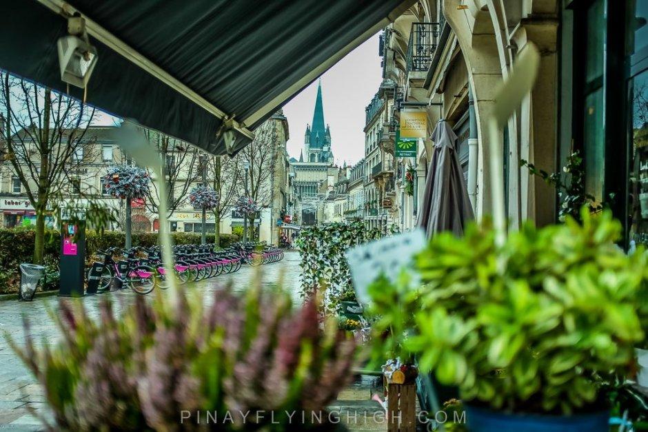 Dijon, France - PINAYFLYINGHIGH.COM-121