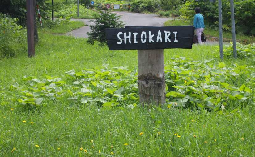Au col du Mont Shiokari