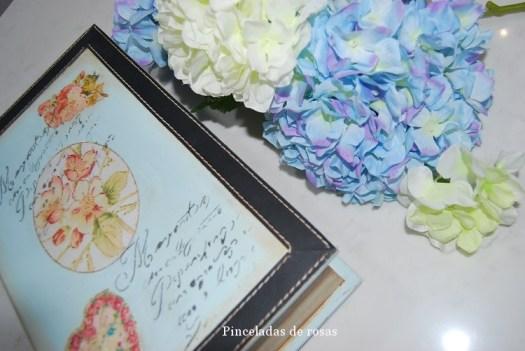 Caja- libro (6)