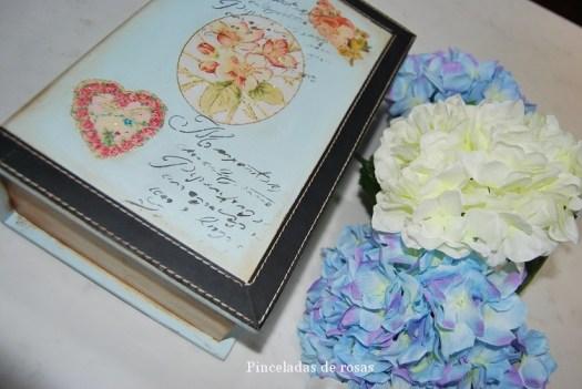 Caja- libro (7)