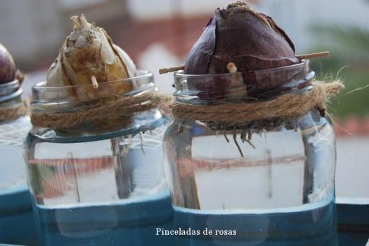 narcisos-bulbos-caja-decoupage-13