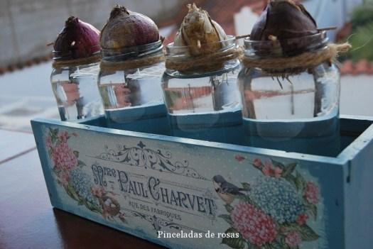 narcisos-bulbos-caja-decoupage-15