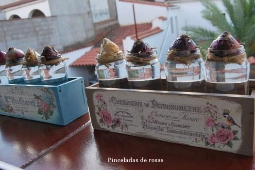 narcisos-bulbos-caja-decoupage-19