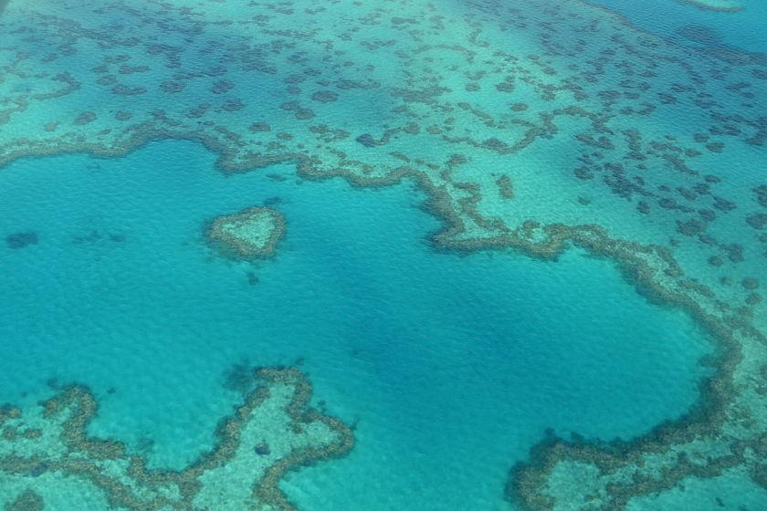Heart Reef, Gran Barrera de Coral Great Barrier Reef, Australia
