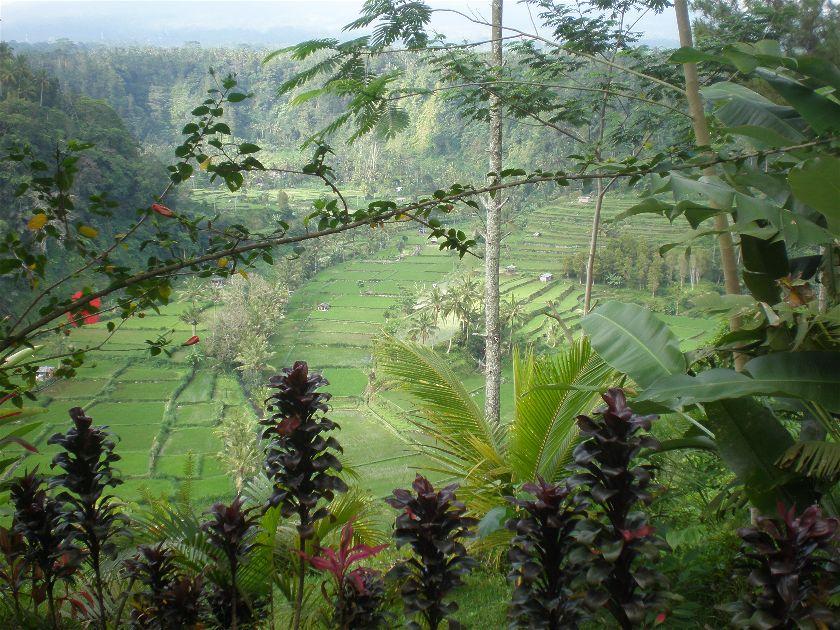 Rendang, Bali, Indonesia