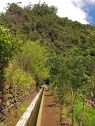 The Levada