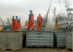 Tema pier during tuna offloading