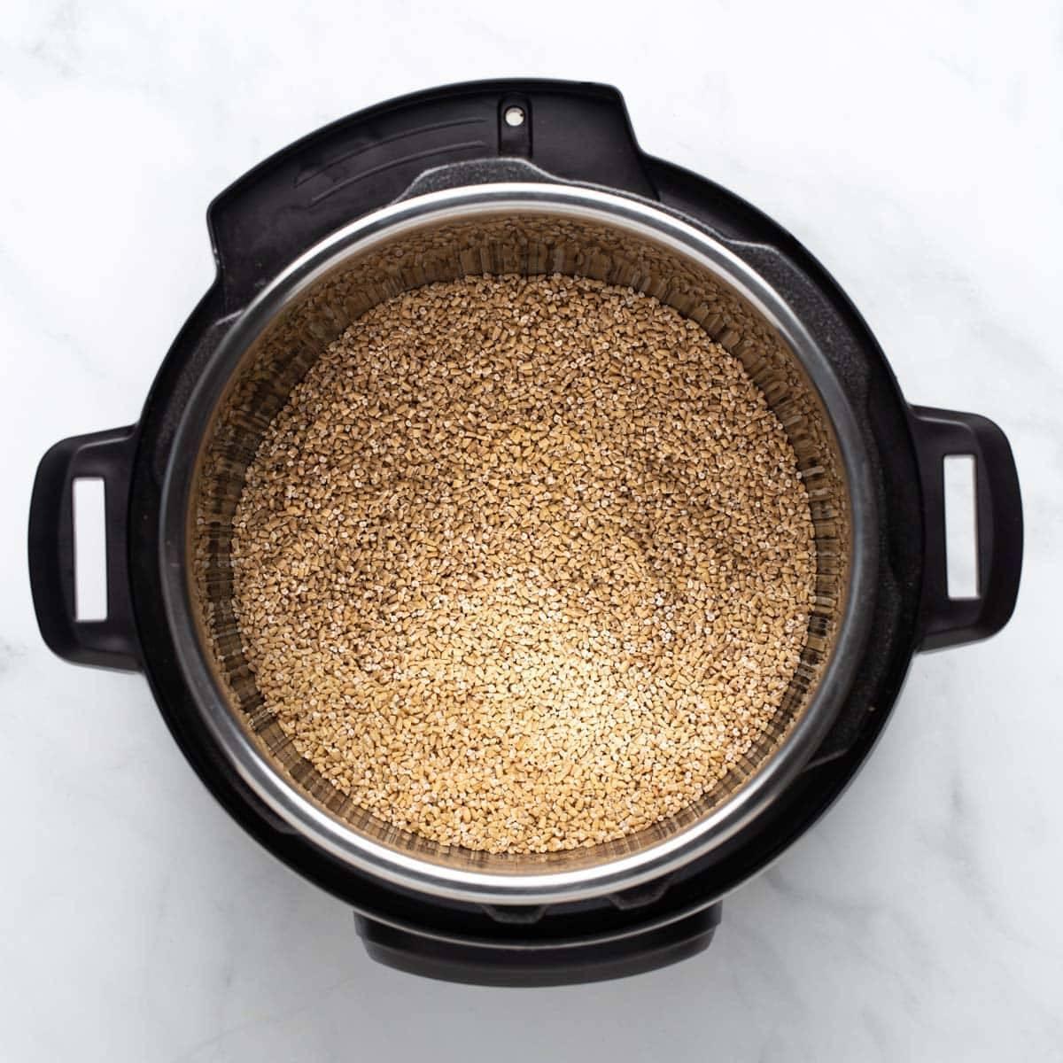 Steel cut oats in the Instant Pot.