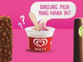 Biaya jadi agen ice cream walls