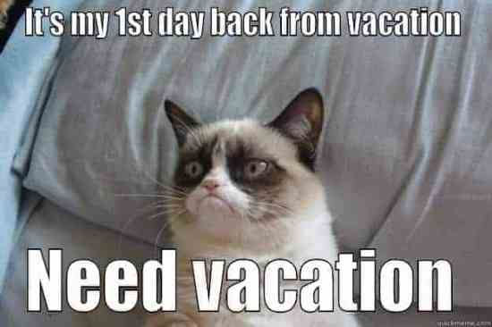 need vacation grumpy cat