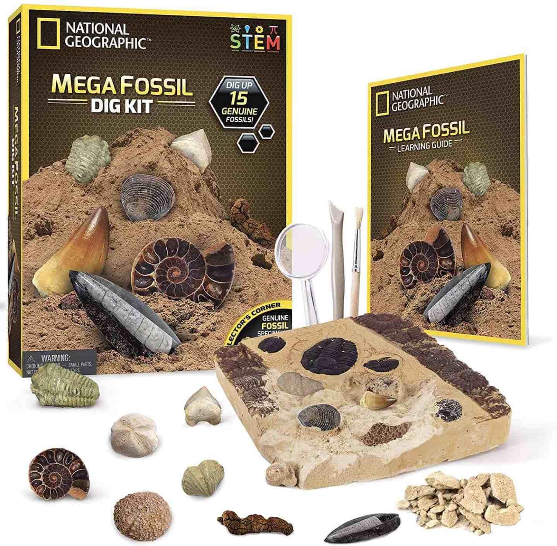 National-Geographic-Mega-Fossil-Dig-Kit