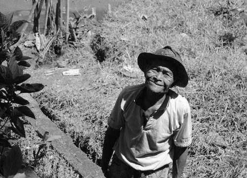Pause von der Maisernte. Bali - Mai, 2015