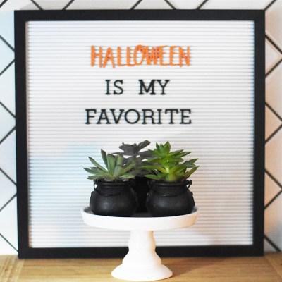 Halloween Succulents in Mini Cauldrons