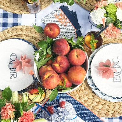 Plan a Perfect Summer Party with Martha Stewart Cricut DIY Peach Decorations