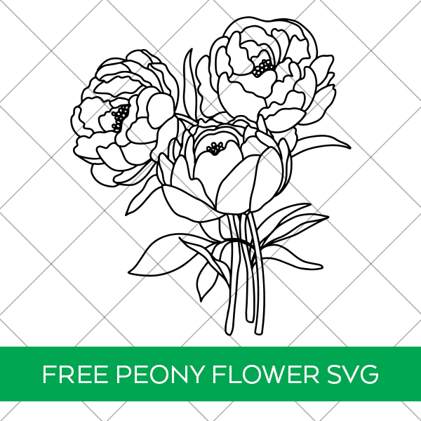Free Peony Flower Bouquet SVG File