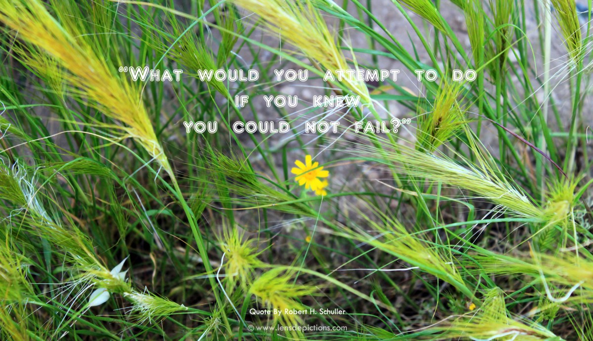 What would you attempt to do, if you knew, you could not fail?