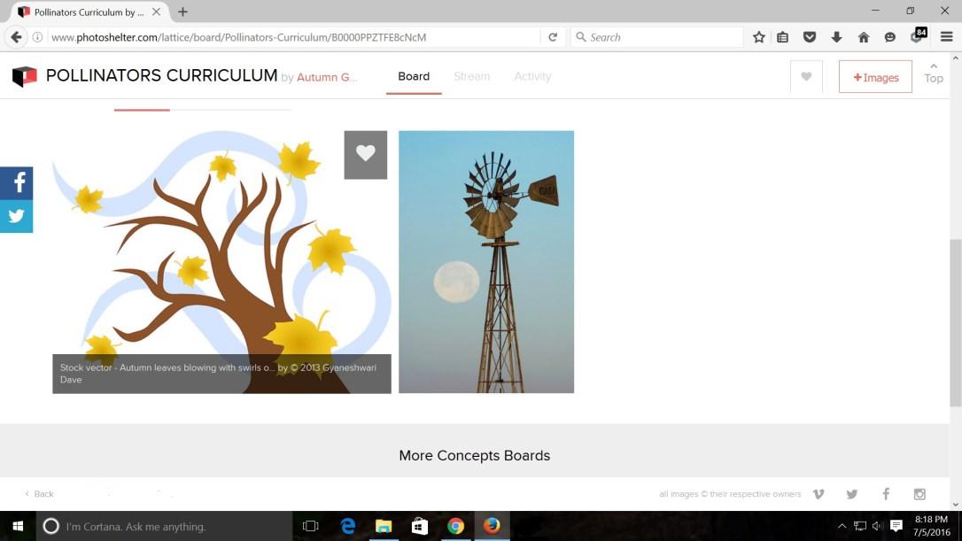 pollinators_curriculum
