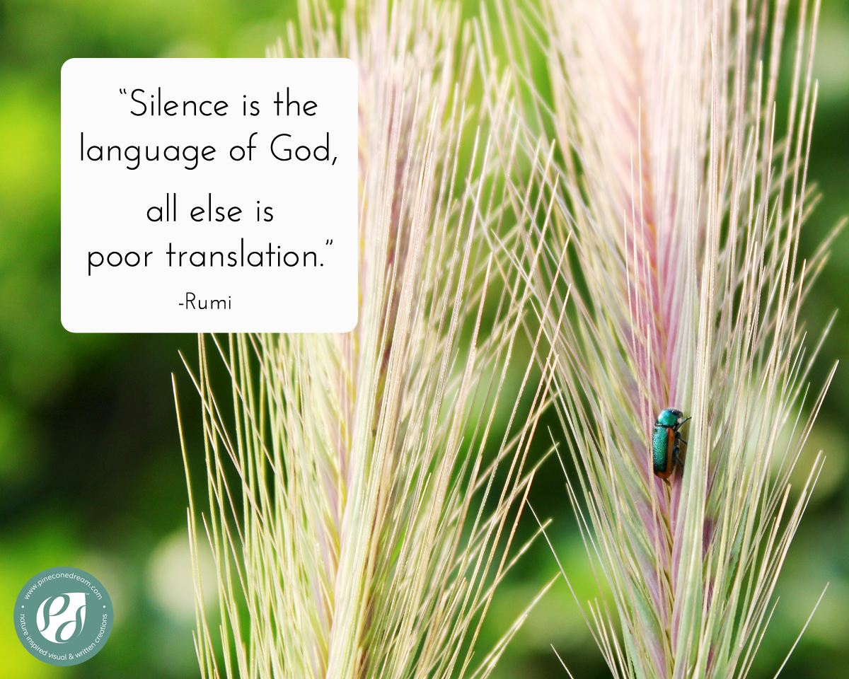 Rumi quote about silence – Picture quote with nature background