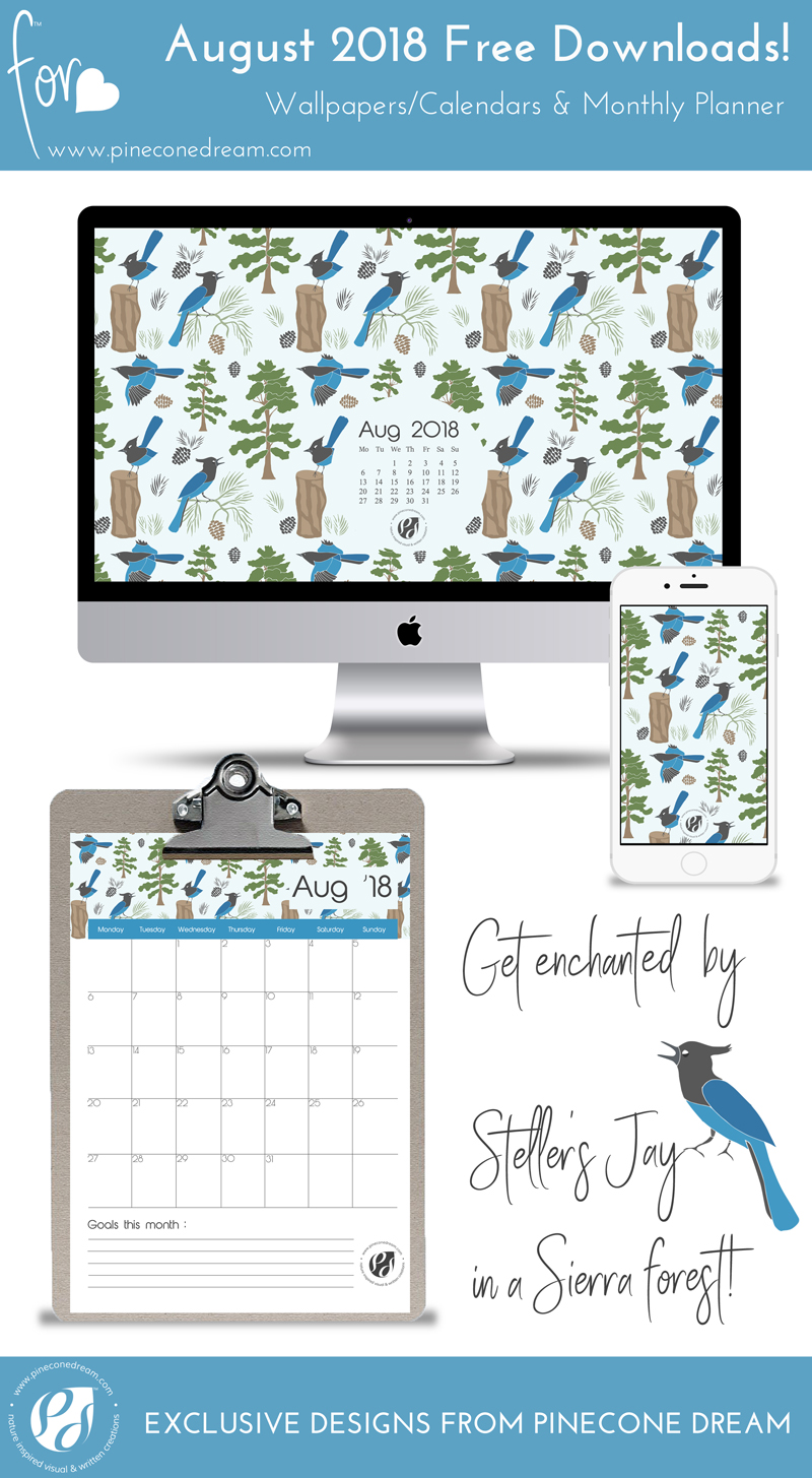 Pretty cute illustrated wallpapers with blue bird pattern.