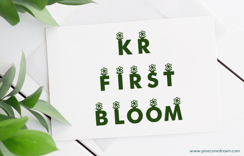 KR First Bloom fonts