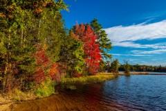 Oswego Lake Pinelands
