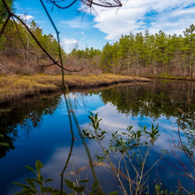 pine-lands-lake-chadsworth-3300060