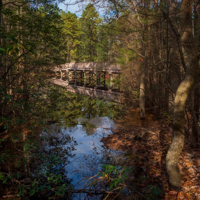 Bridge at Cedar Run Wildlife center