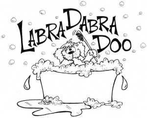 Labradabradoo027