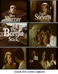Borgia ad 2013