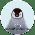 error509