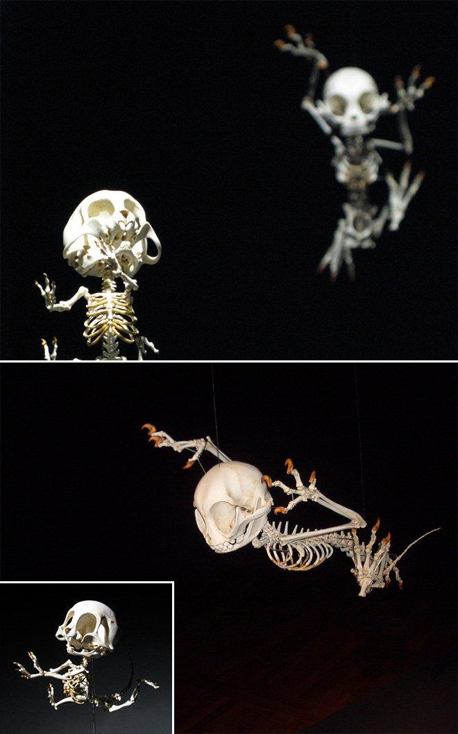 Скелеты мульт-героев