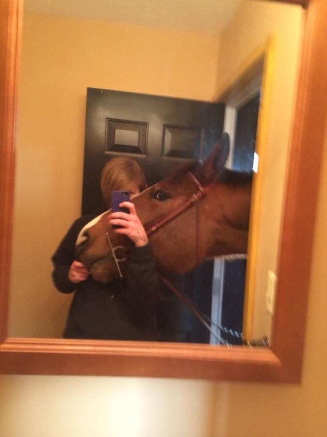 mon petit poney r344544e_712