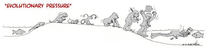 evolution 1457891688_evolution_05