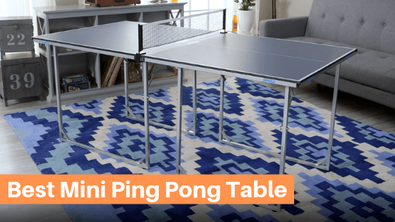 Best Mini Ping Pong Table Reviews
