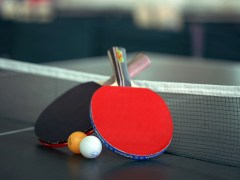table tennis category