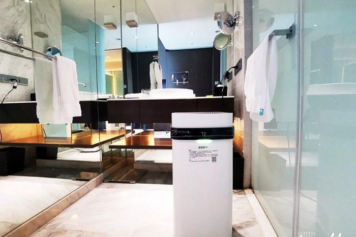 空氣清淨機推薦|POIEMA ZERO快乾版 空氣淨化氣 清洗容易無耗材 20~30分鐘即速快乾